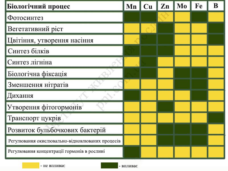 Мікроелементи у живленні рослин