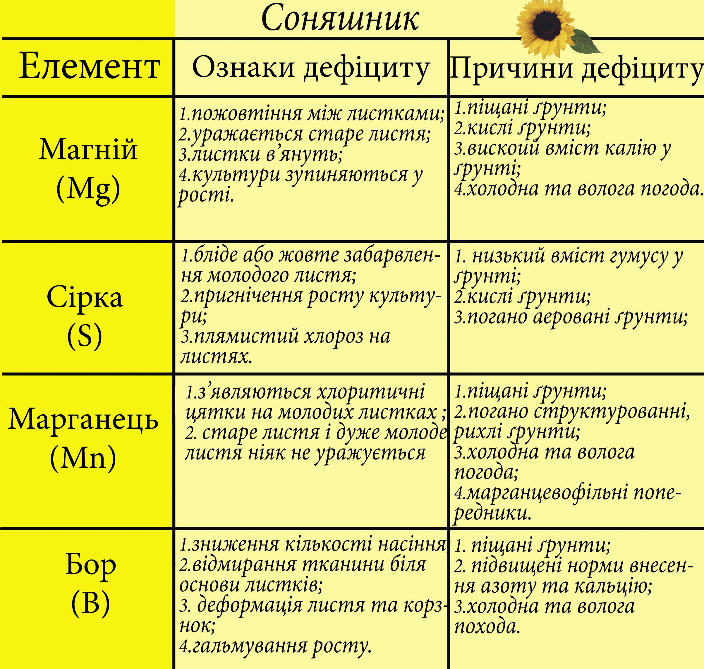 елементи на культурах - соняшник